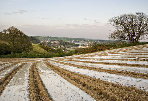 ploughed field rosscarbery