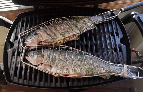 Große Forellen auf dem Grill