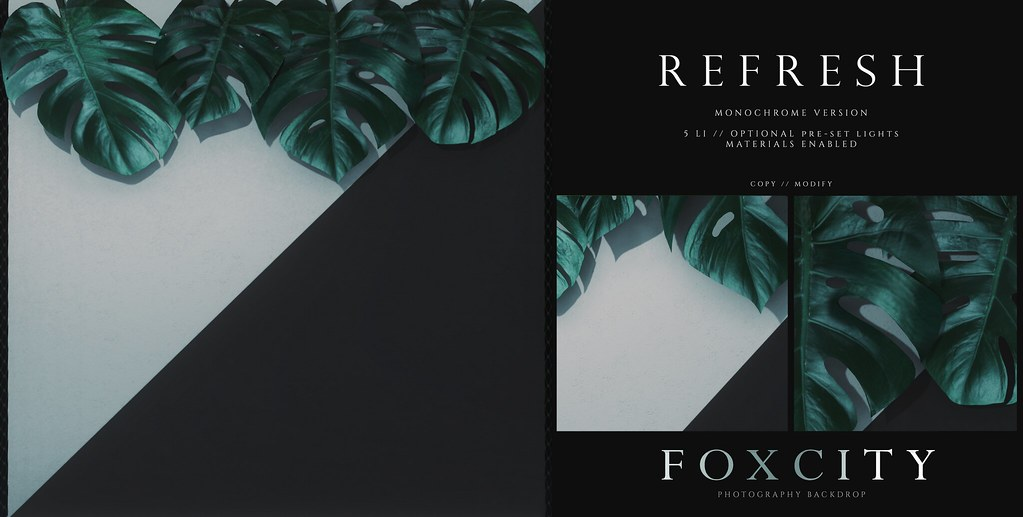 FOXCITY. Photo Booth - Refresh (Monochrome)