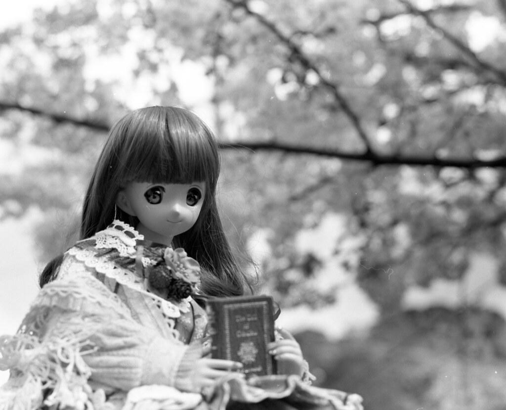 Reading? Flower?