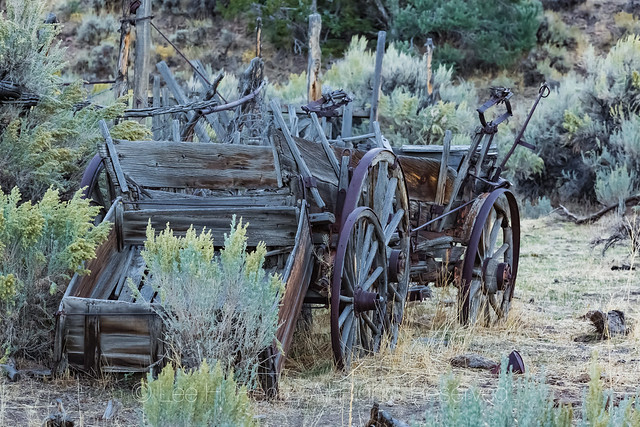 Old Wagons in Ione, Nevada