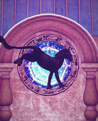 Unicorn of The Stars (Fantasy Faire 2020)