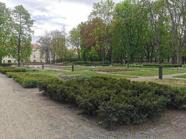 ogród krasińskich (26)