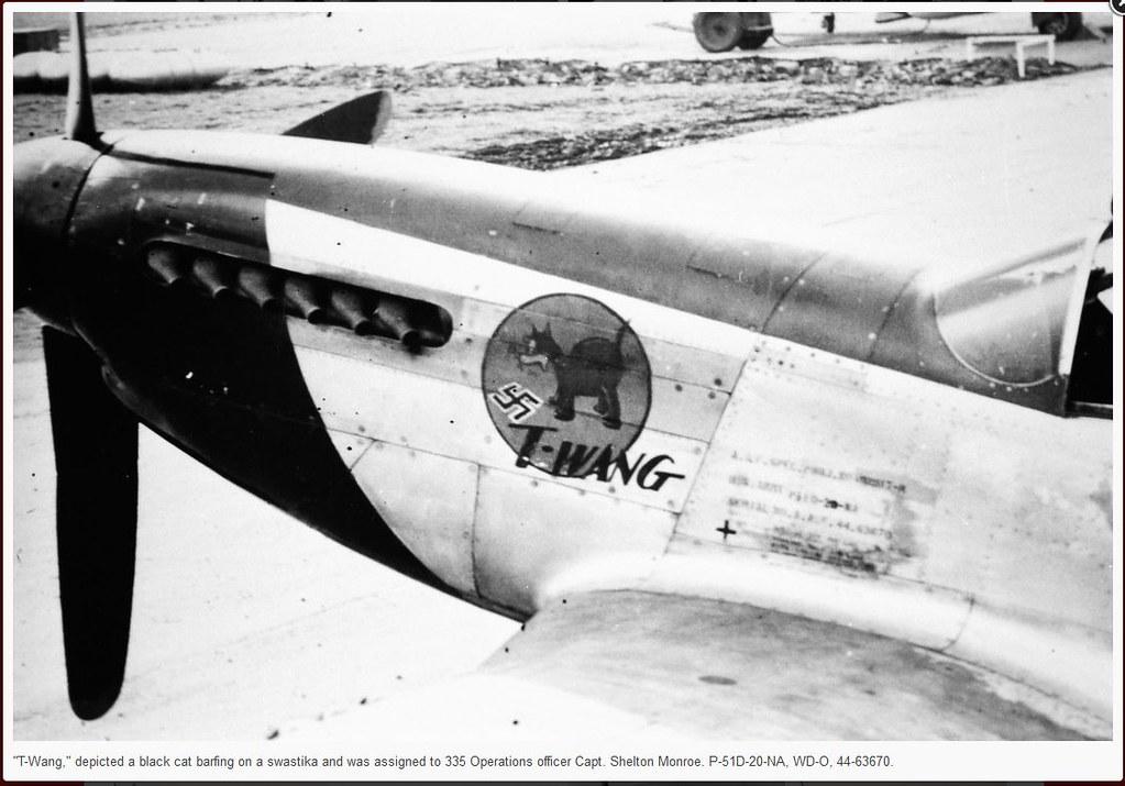 P-51 T-Wang #2