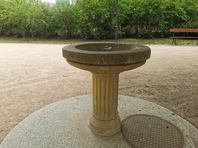 ogród krasińskich (20)