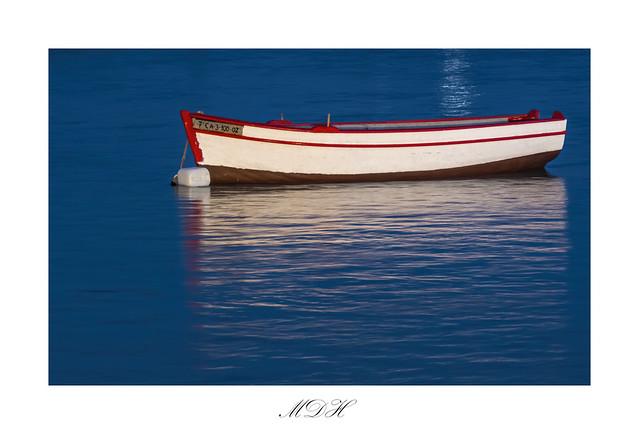 Barca a la luz de la Luna.