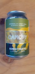 Canopy - Sunray Pale Ale 4.2% (330 ml can)