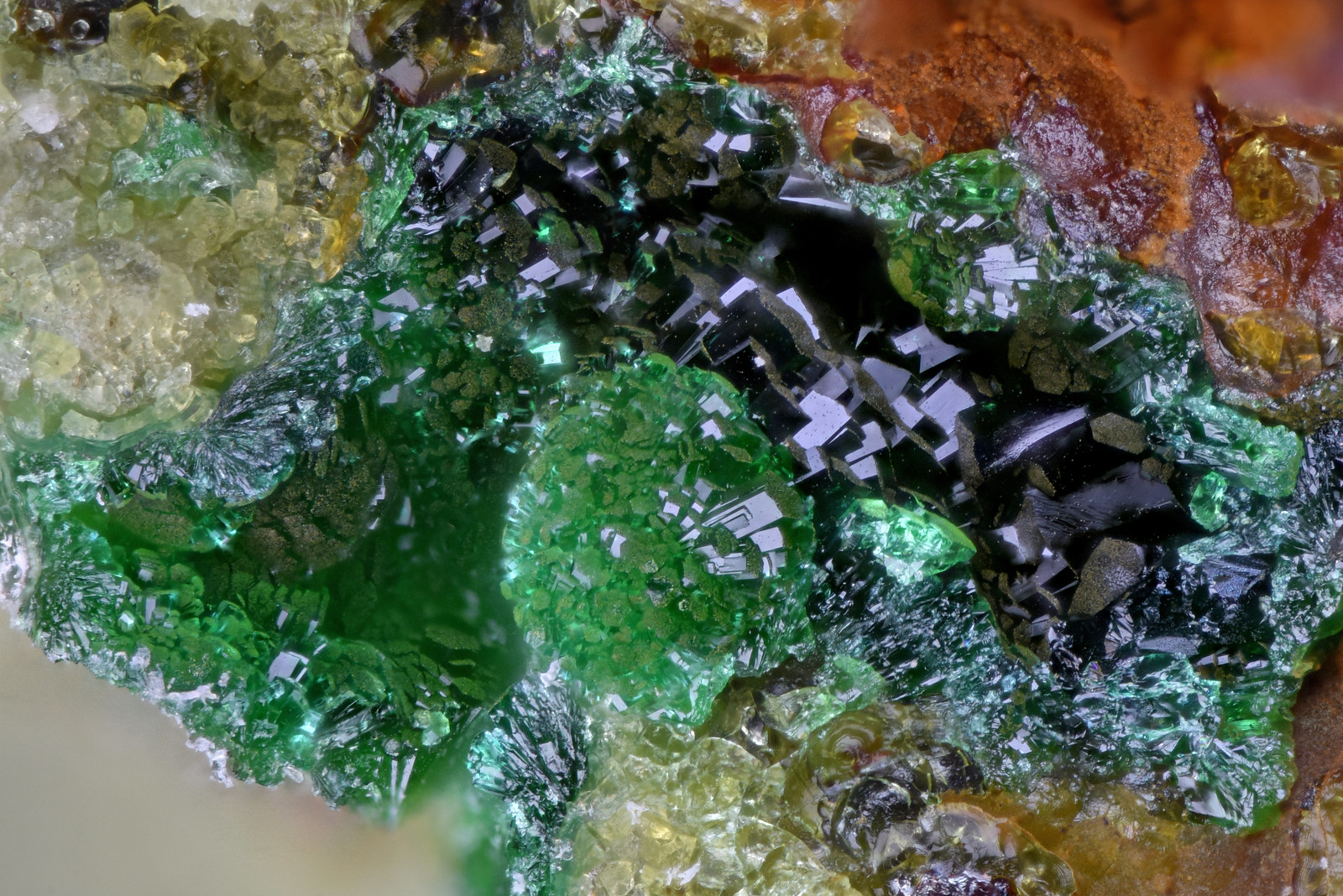 イットリウムアガード石 / Agardite-(Y)