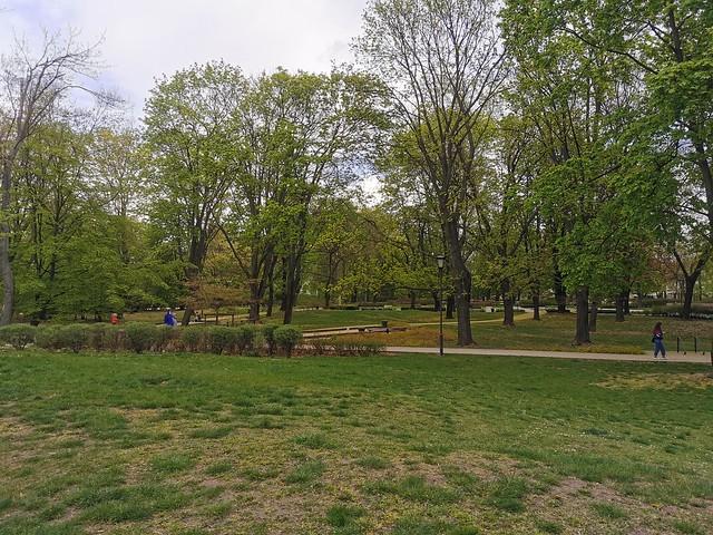ogród krasińskich (24)