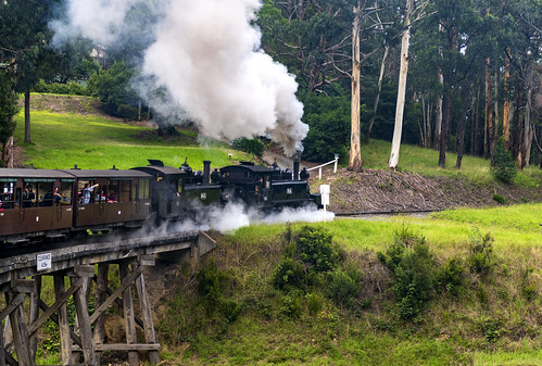 австралия australia melbourne мельбурн пейзаж landscape паровоз locomotive puffer railway железнаядорога лес forest dmilokt мост bridge ins