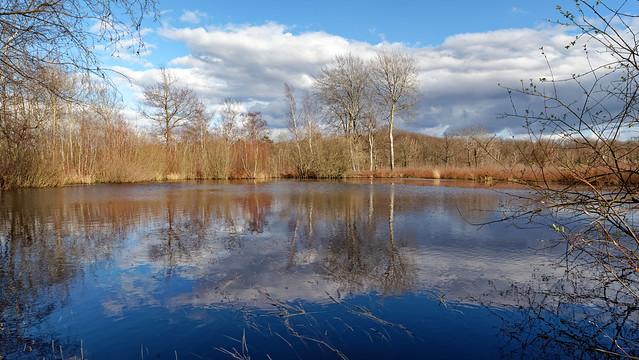 Coquibus pond