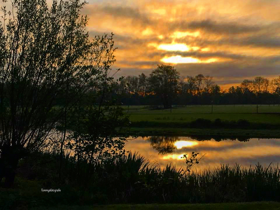 Polder near to Woerden, the Netherlands  Memories of Kingsday visit in Holland