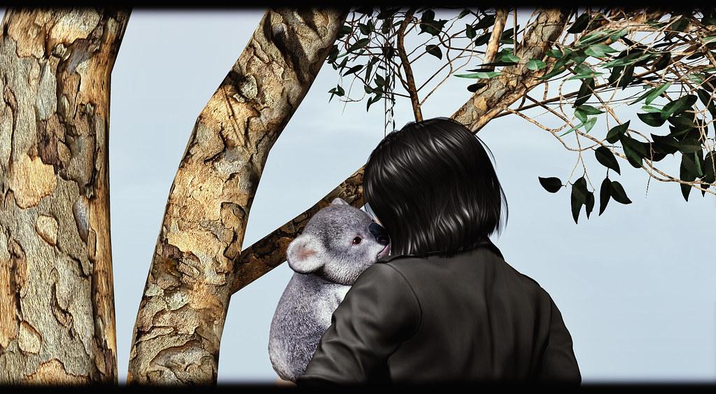 [Rezz Room] - Koala Adult Animesh