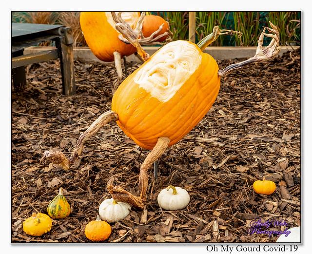 It Affects Pumpkins Too!!
