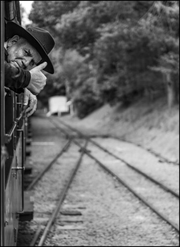 австралия australia melbourne мельбурн пейзаж landscape паровоз locomotive puffer railway железнаядорога лес forest dmilokt