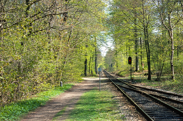 Spring at the railroad in the woods.