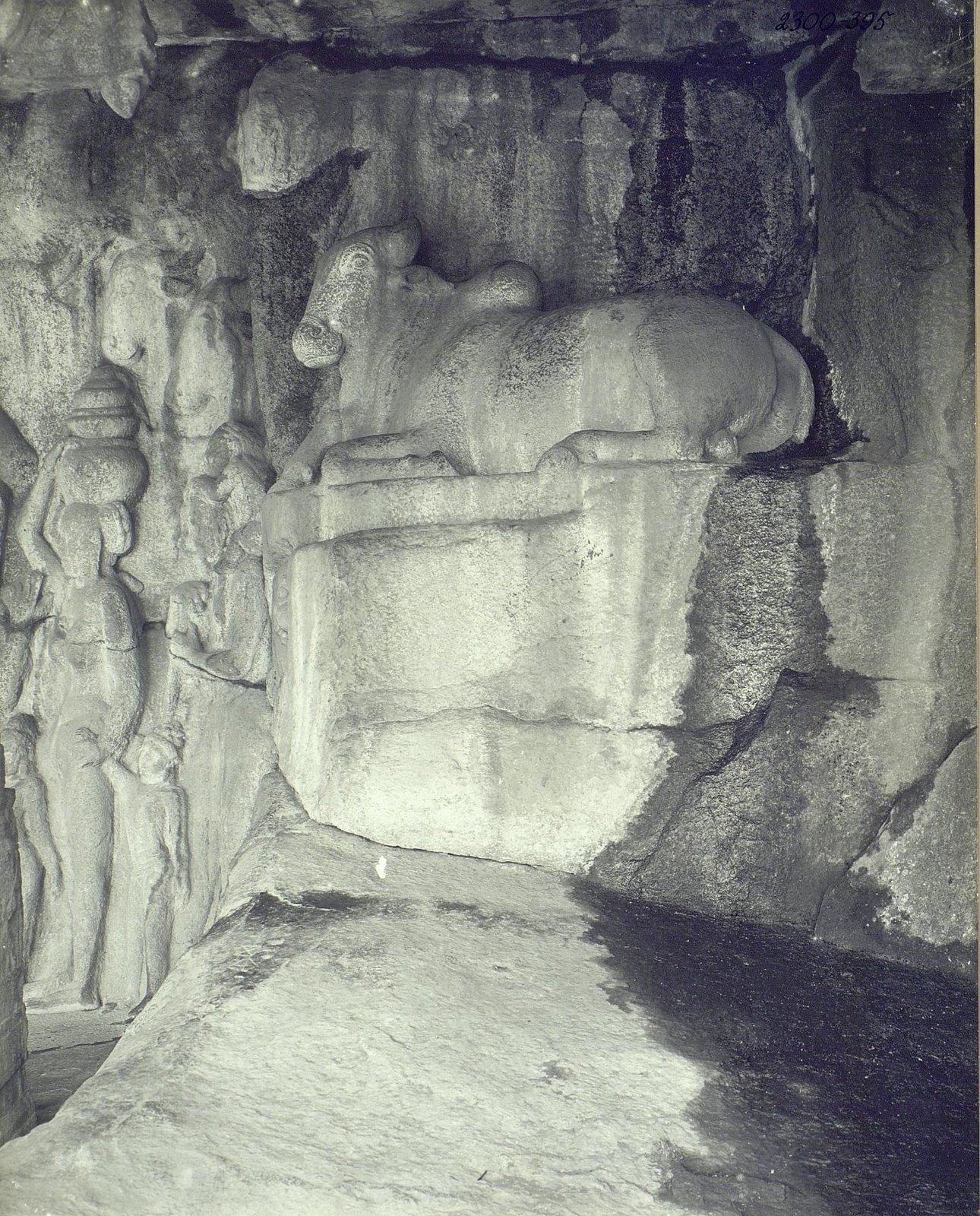 Мамаллапур (деталь рельефа с быком) (1)