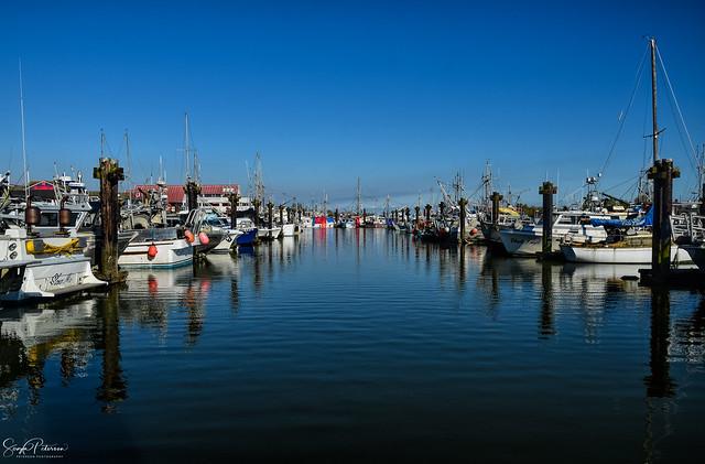 Steveston Fishing Village - Steveston Harbour