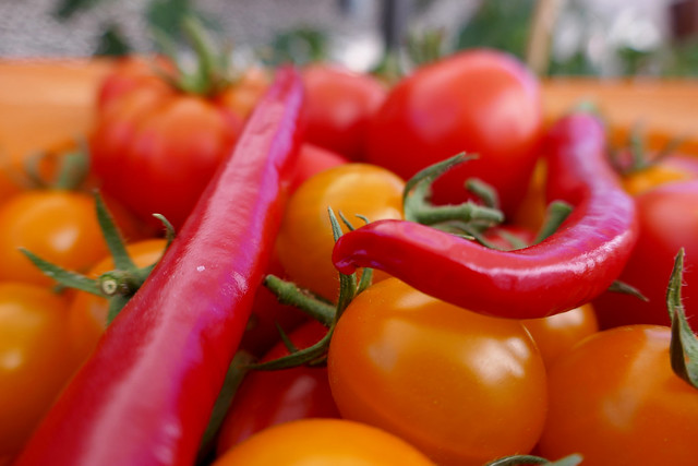 Tomatoes and Chilis