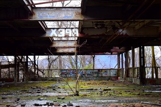 Man & Nature, Dennings Point Brick Works (abandoned) NY.wm