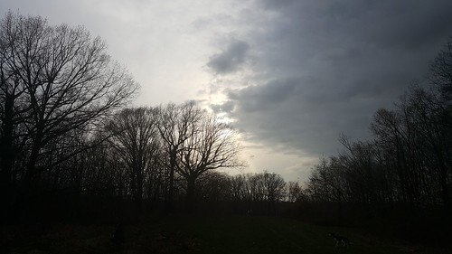 eastclevelandohio sunset foresthillpark