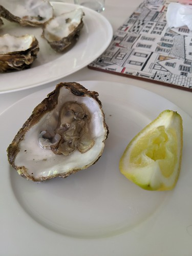 You Can Open Oysters With A Screwdriver | by nedrichards