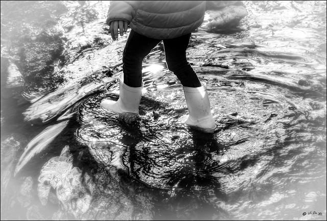 Covid19: Une traversée longue, délicate et hasardeuse... / Long, dificult and hazardous crossing