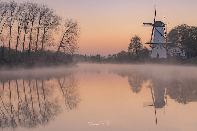 Mystical dutch sunrise