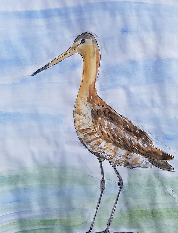 Godwit by Laura Owens