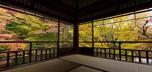 Autumn Convergence 秋の収束