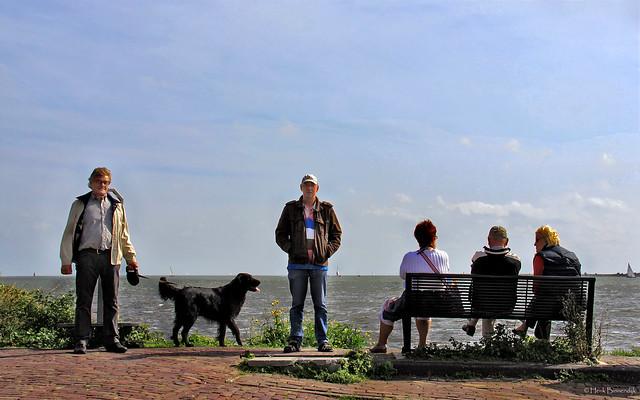 Volendam: Markermeer harbour