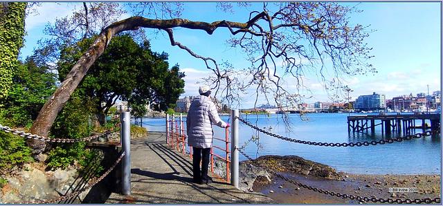 Peter Pollen Waterfront Park bridge