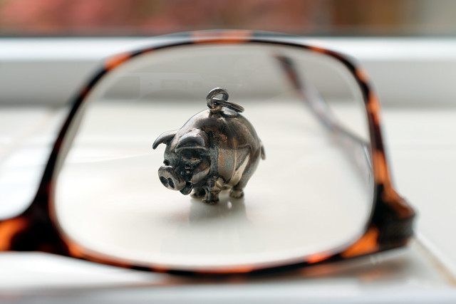 I spy with my little eye (118/366)