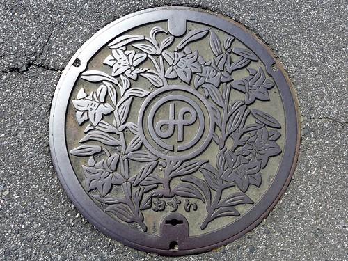 Ichinomiya Chiba, manhole cover 2 (千葉県一宮町のマンホール2)