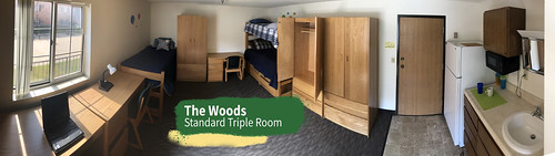wright-state-the-woods-triple-room_49790153851_o