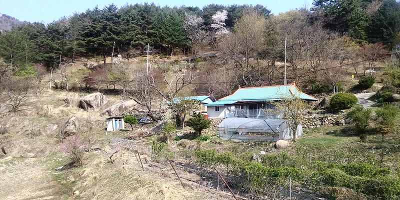 오송폭포 무릉도원 아침산책길