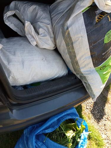 sacks of grass Apr 20