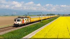 Re 420 262-8 'Europareisen' - Bavois