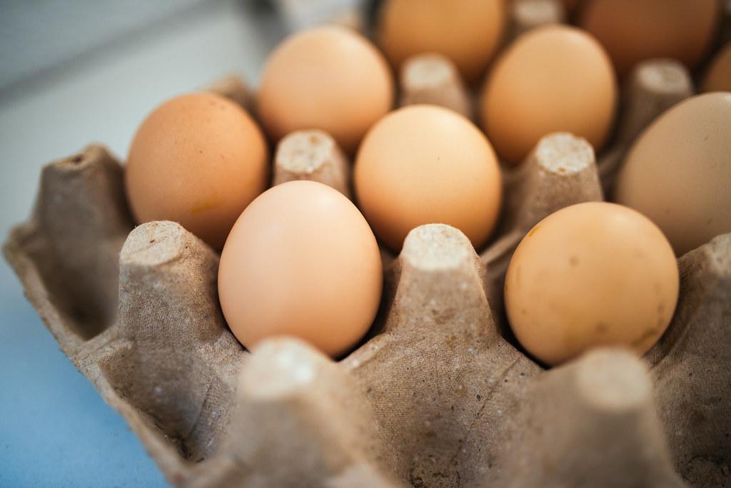 Eggs in an egg carton   Ivan Radic   Flickr