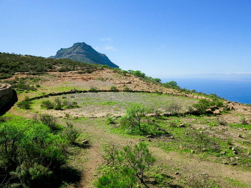 Antigua era para el grano en Tenerife