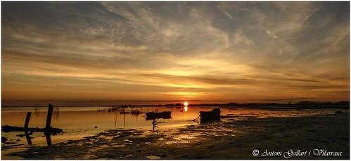 Sunrise Delta Ebro.  (Delta del Ebro - Catalonia). (EXPLORE 29-04-2020)