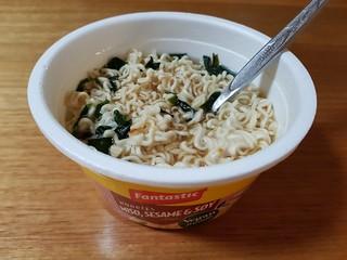 Vegan Fantastic Noodles