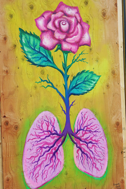 Rose Lungs
