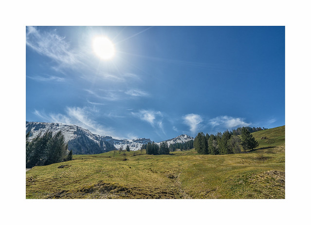 Spring in the Austrian Mountains