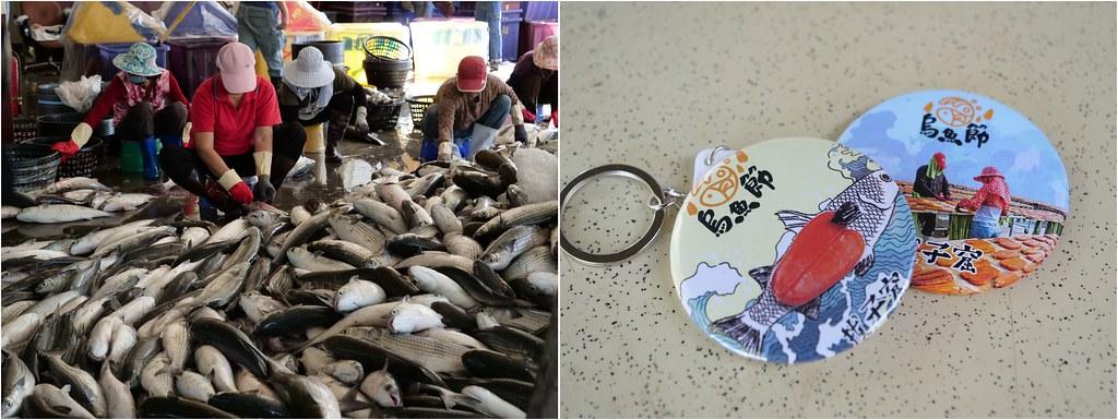 焚化爐預定地一公里內就有拔子窟烏魚養殖場。圖為竹北烏魚節推廣活動。圖片來源:新竹縣政府。