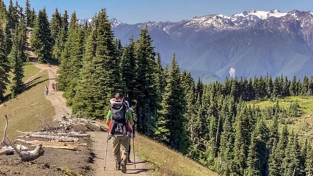 High Ridge Trail, Olympic National Park, Washington