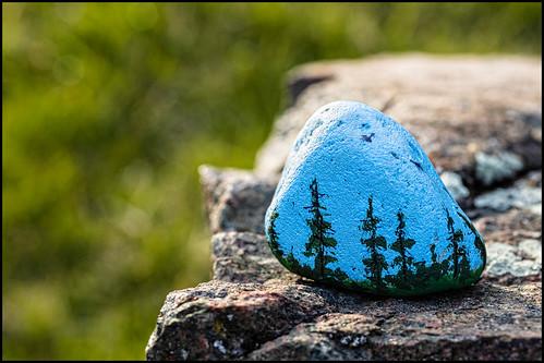 raw kanata dandewan art tuesday canonmacroefs60mm128usm colour stilllife paint blue ottawa forest rock paintedrock ontario canada green canoneosr 2020 april