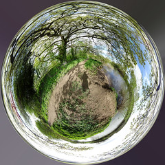 Spherical panorama by the river Dee, 2020 Apr 13