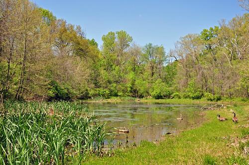 jmstrain park pond landscape arnold missouri pommecreek