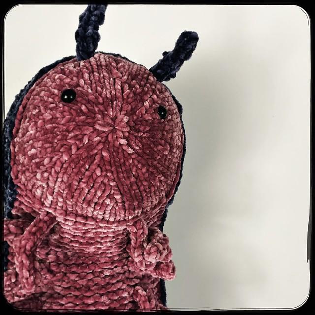 Knit Pill Bug Softie